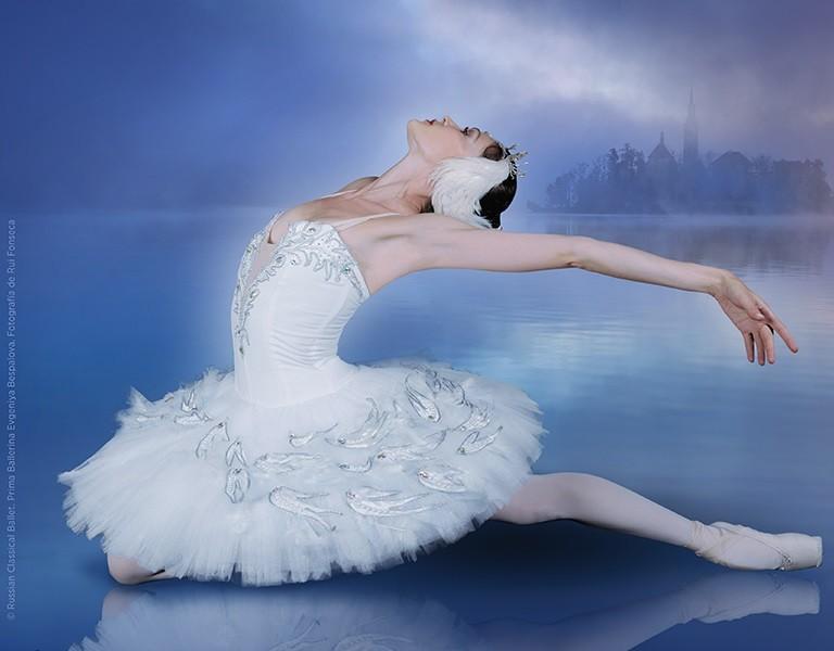 Resultado de imagen para el lago de los cisnes